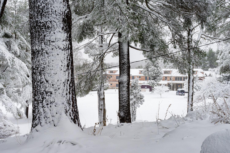 Monastery through Trees in Snow 4384